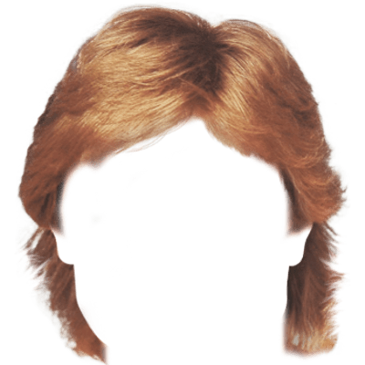 Wig Afro Poof Transparent Png 2291