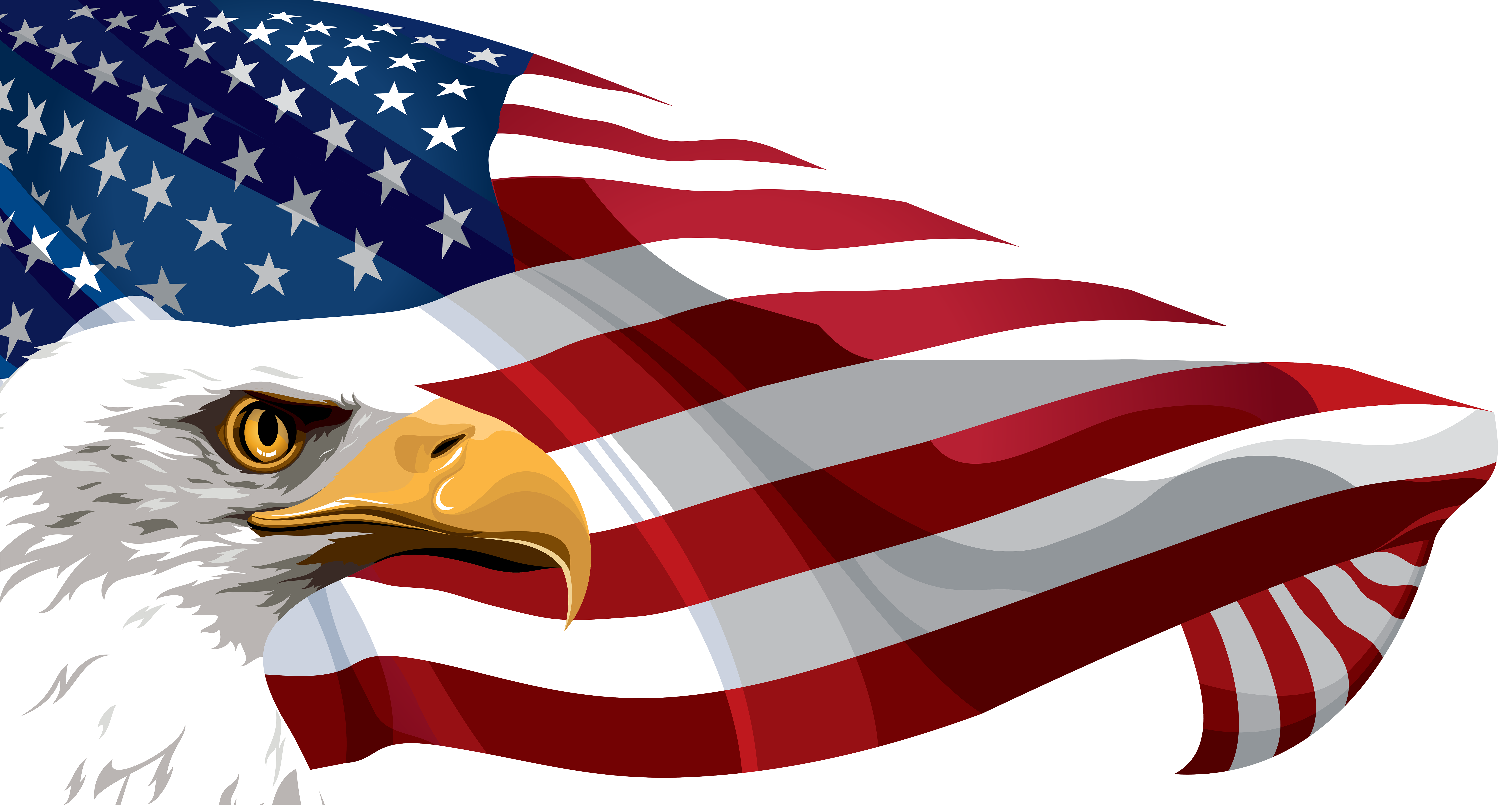 bald eagle clipart cool usa flag png images