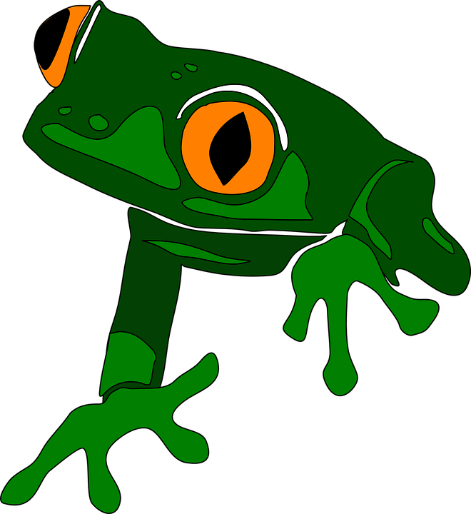 Frog Animal Cute Free Vector Graphic 27651