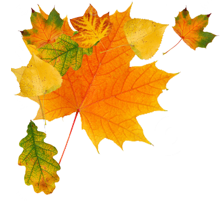 Autumn Png Transparent Image  5859