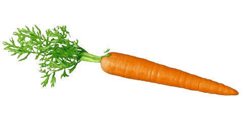 Fresh Carrot Icon Picture 25853