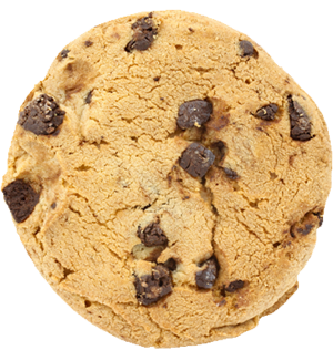 Cookie Png 4982