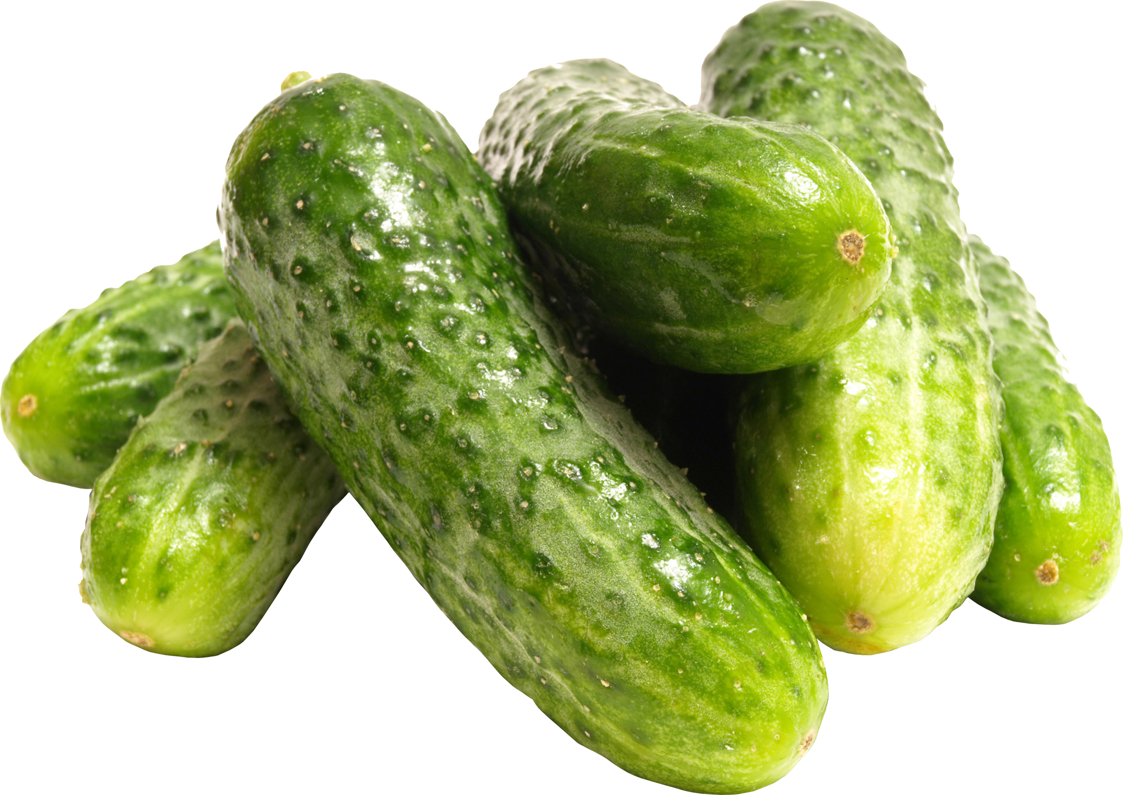 Pickling Cucumber HD Photo 25893
