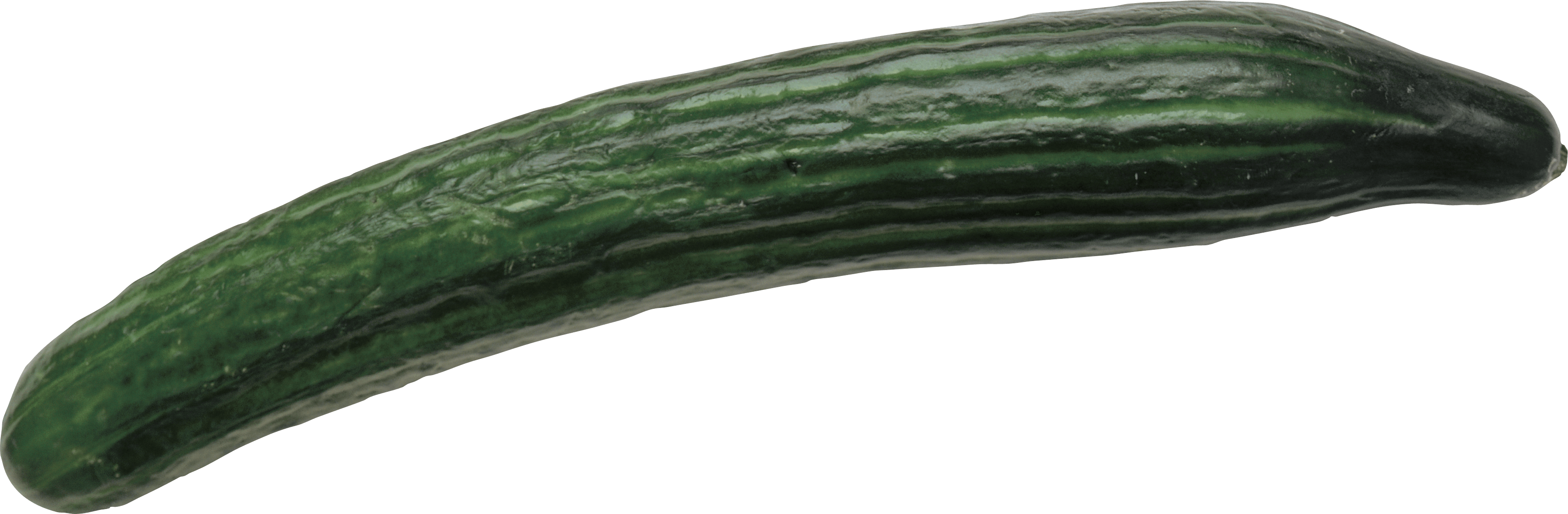 Cucumber Wonderful Picture Image