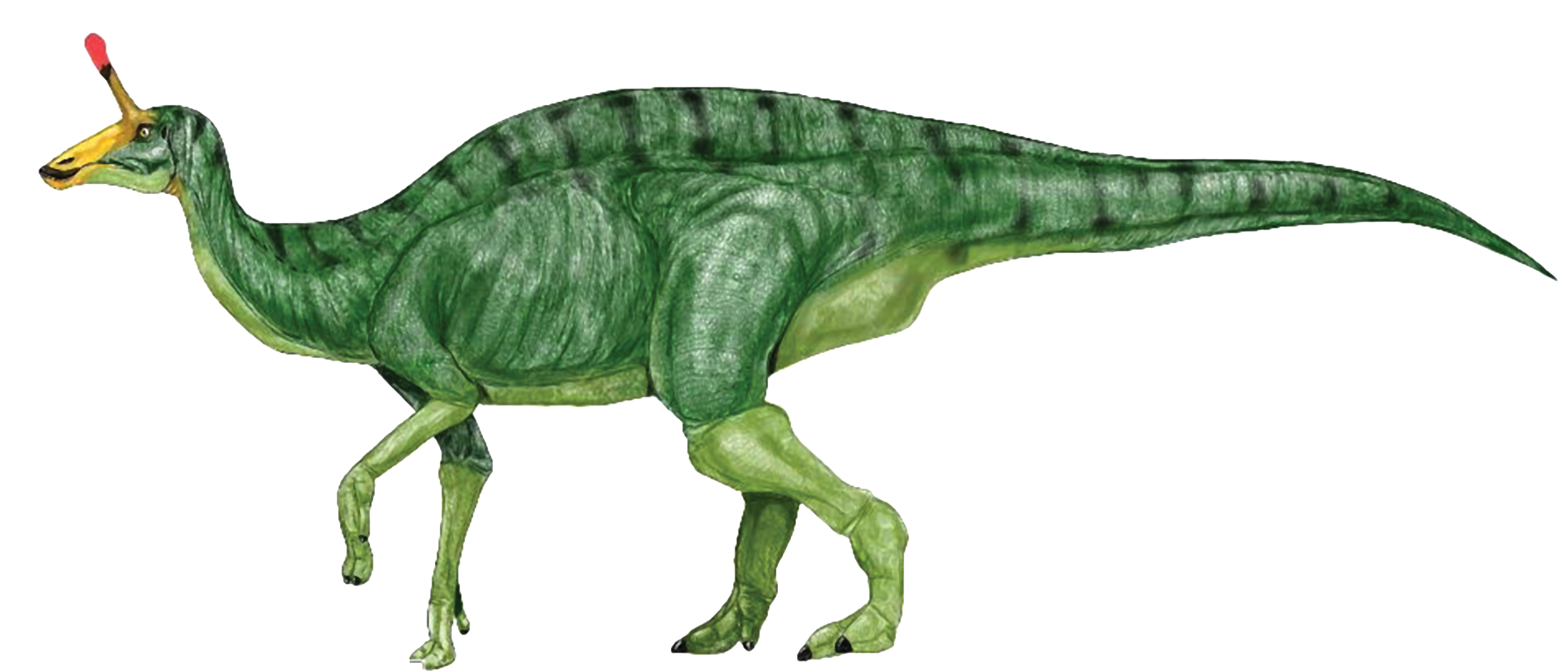 Dinosaur Free PNG PNG Images