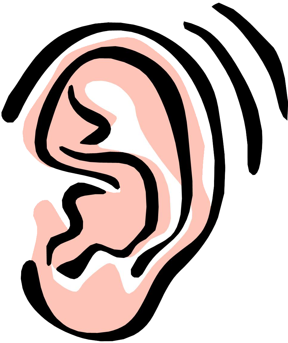 Ear Vector Graphics Hearing PNG 26363