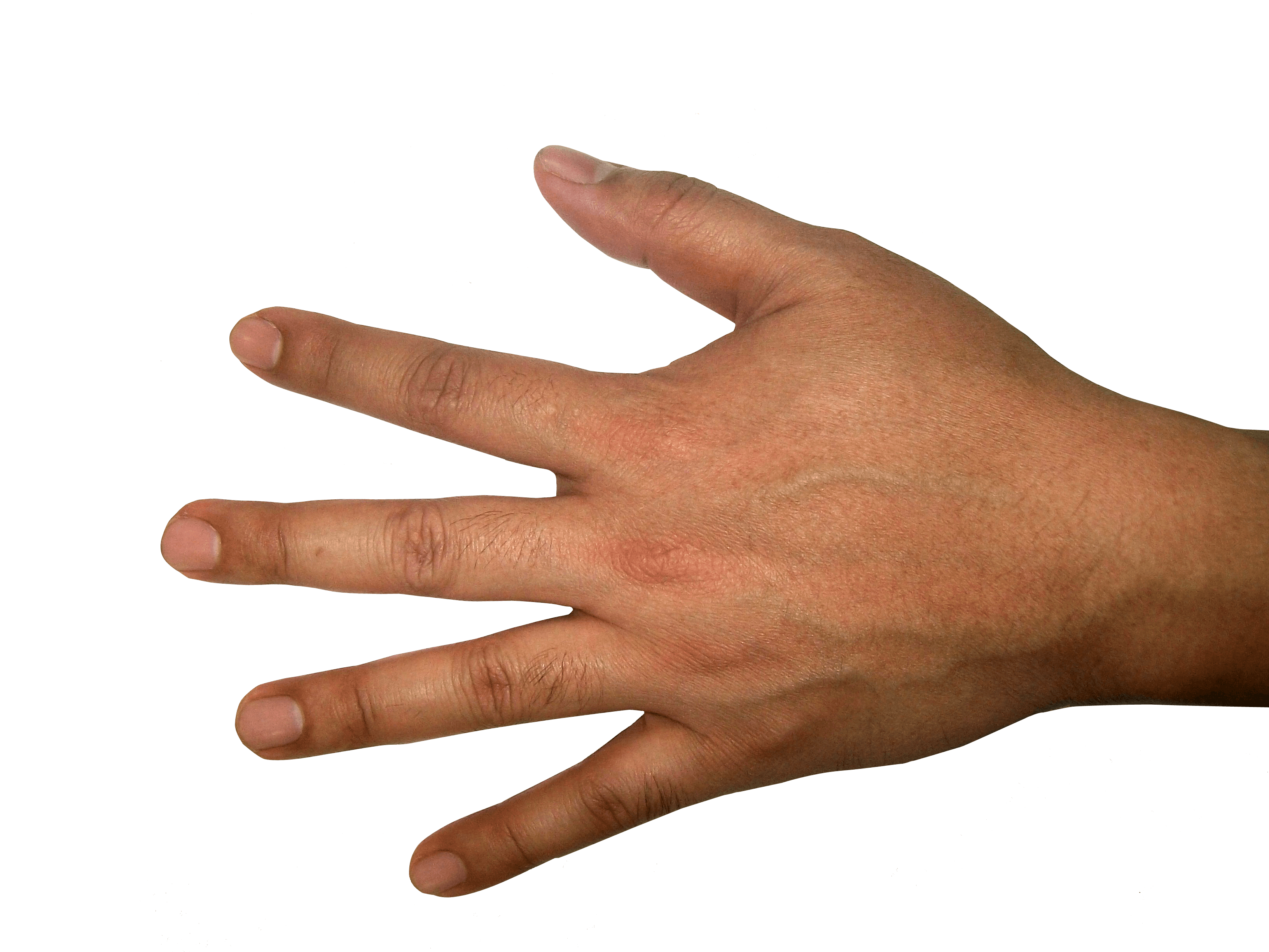 Download Hands Png Finger Hand Image