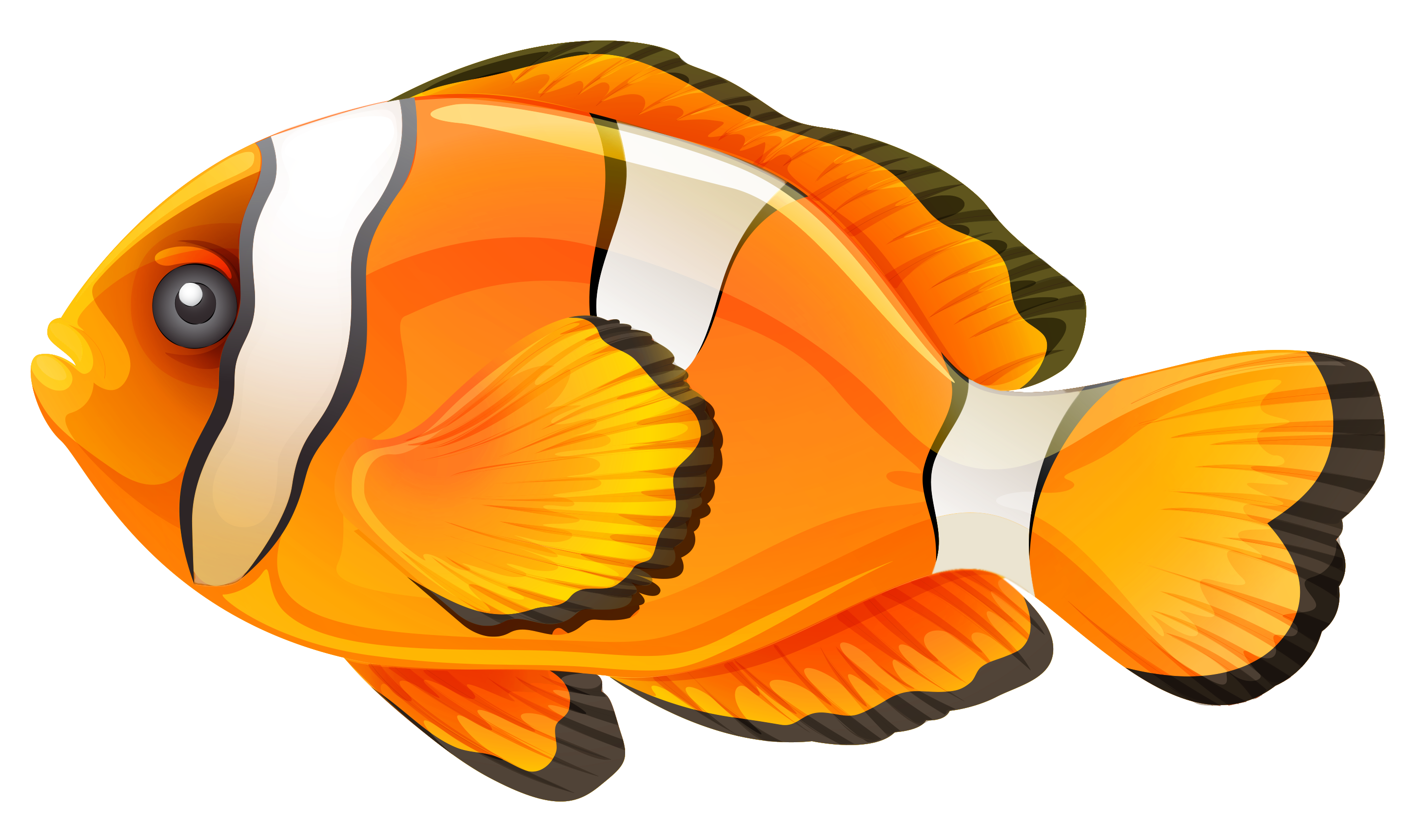 download fish free png transparent image and clipart how to make clipart background transparent how to make cliparts