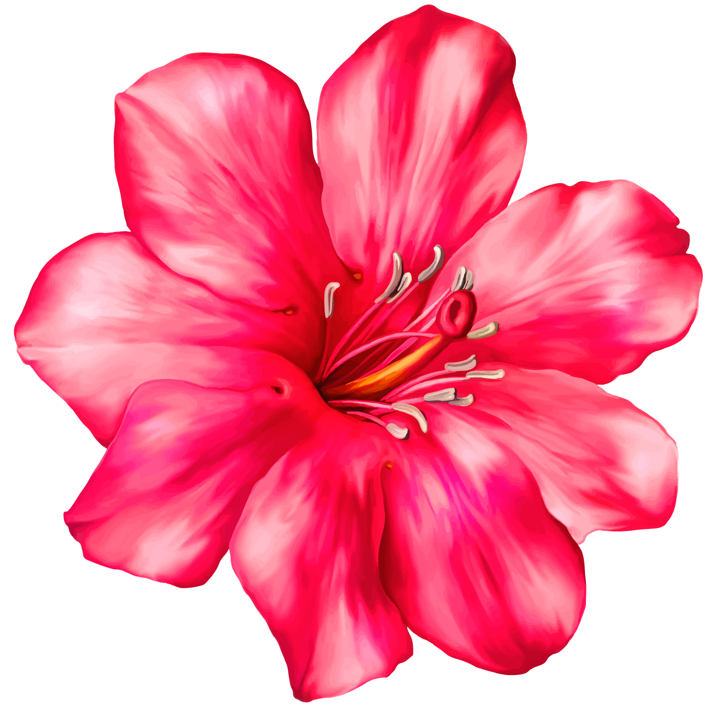 Exotic Pink Flower Png Clipart Picture 6471