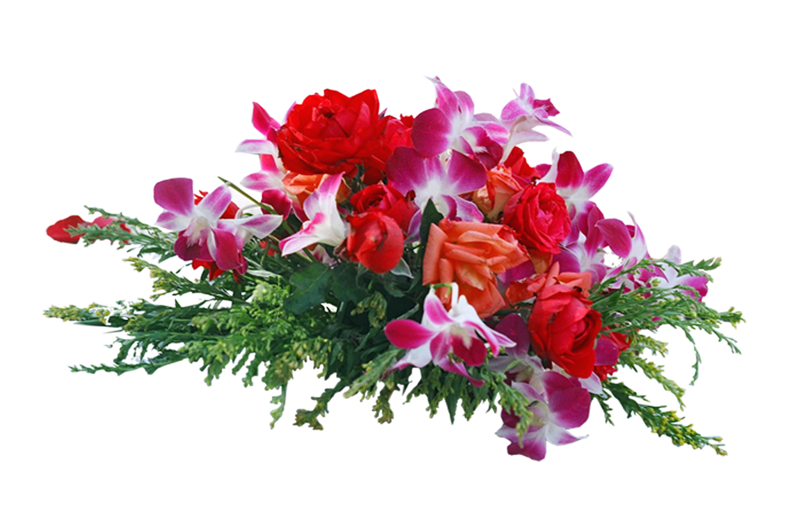 Frame Flowers Png 6502
