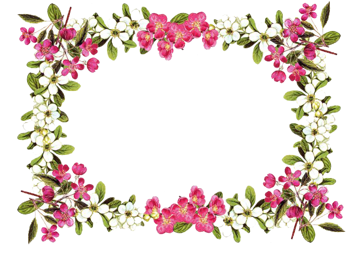 Flowers Borders Png Transparent Photo 5627
