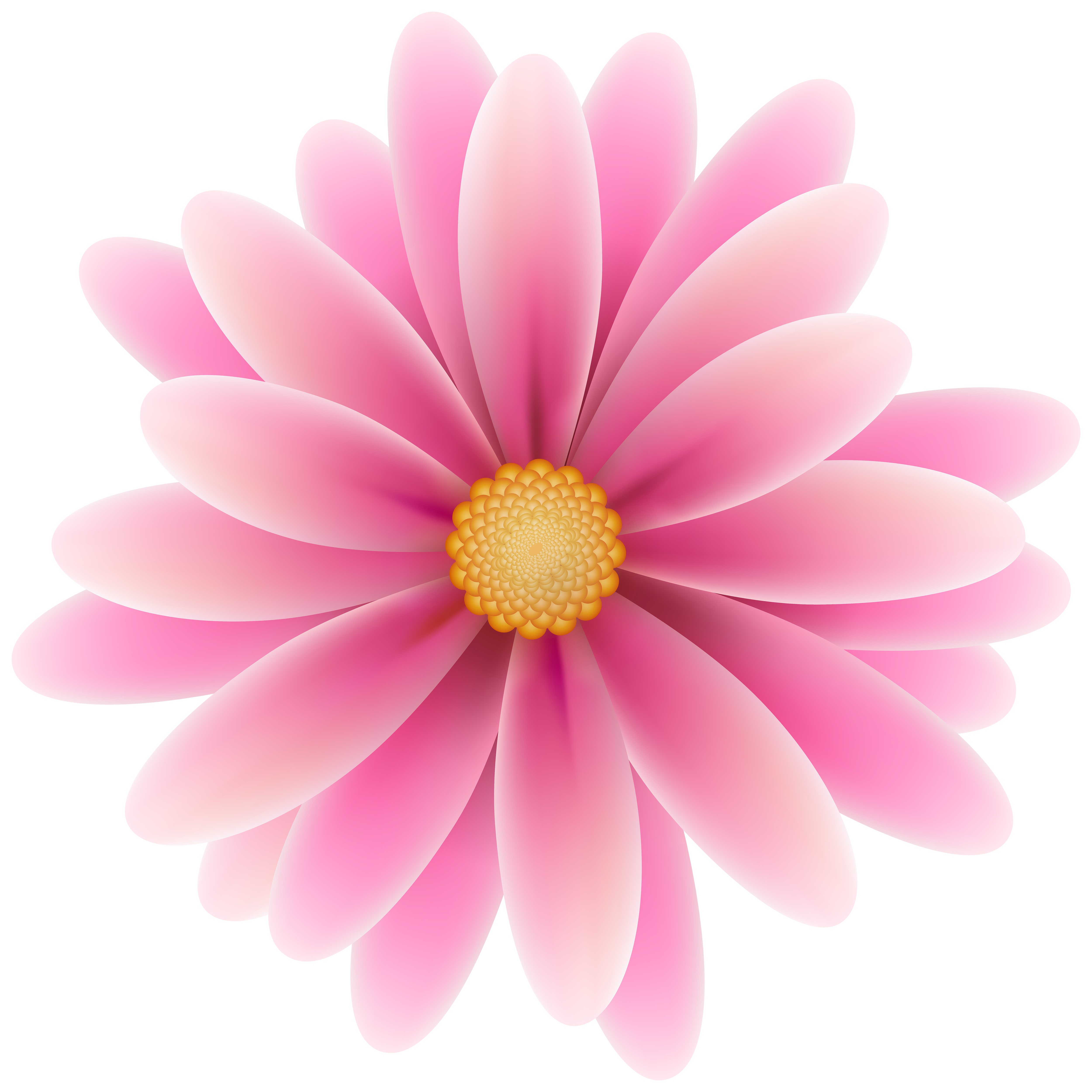Flowers High Quality PNG PNG Images