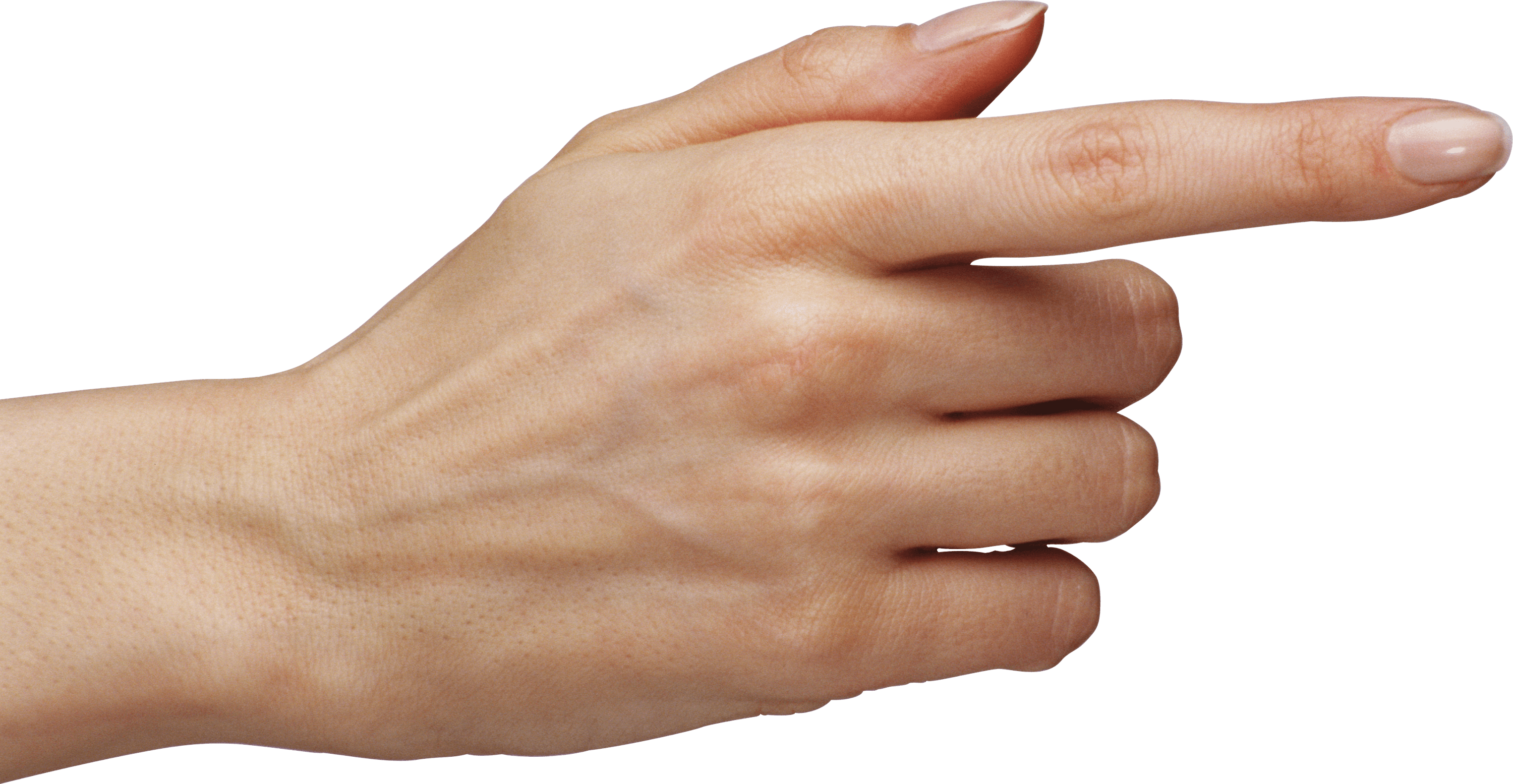 Hand, Finger Free Download Transparent