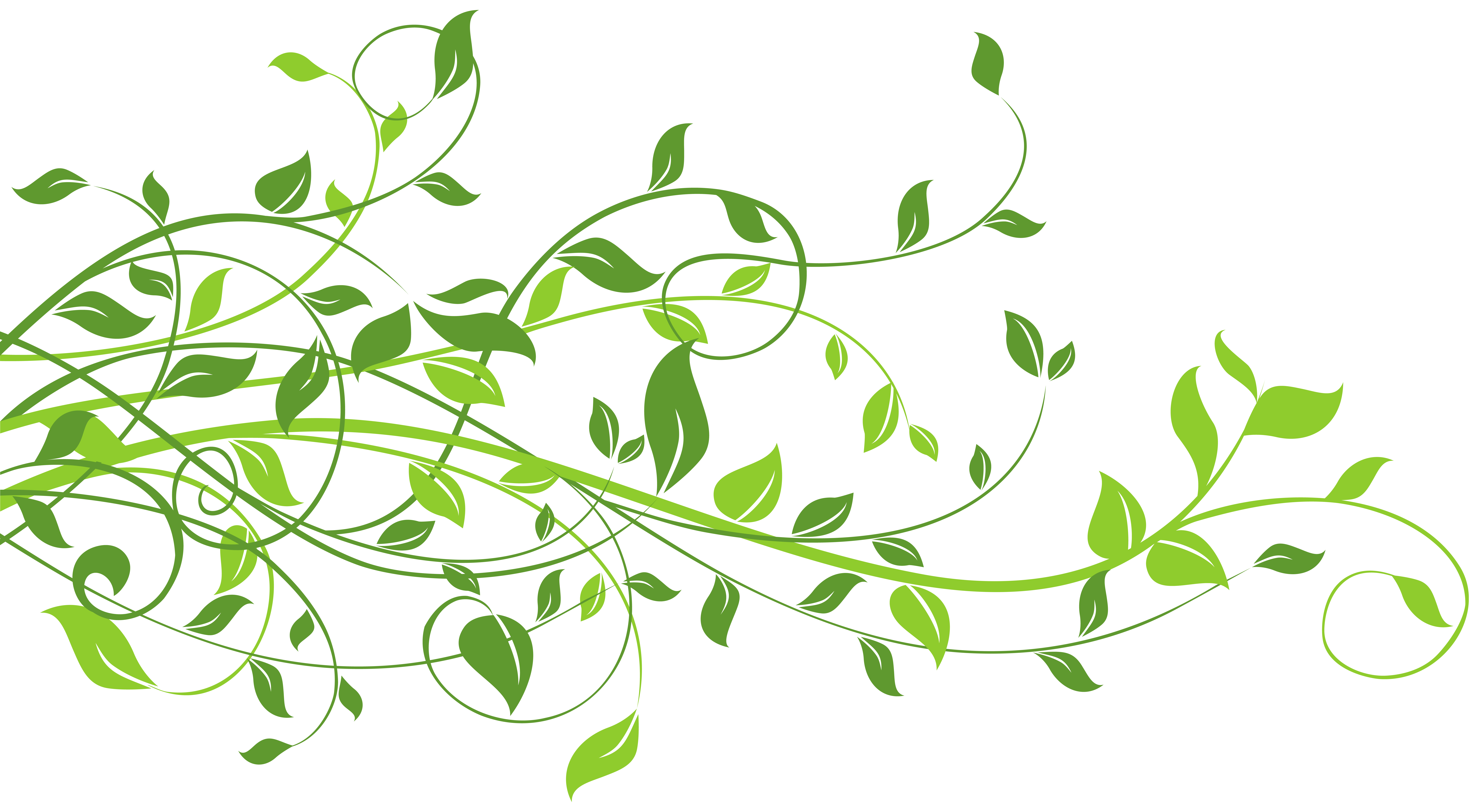 Leaf Frame Clipart Photo