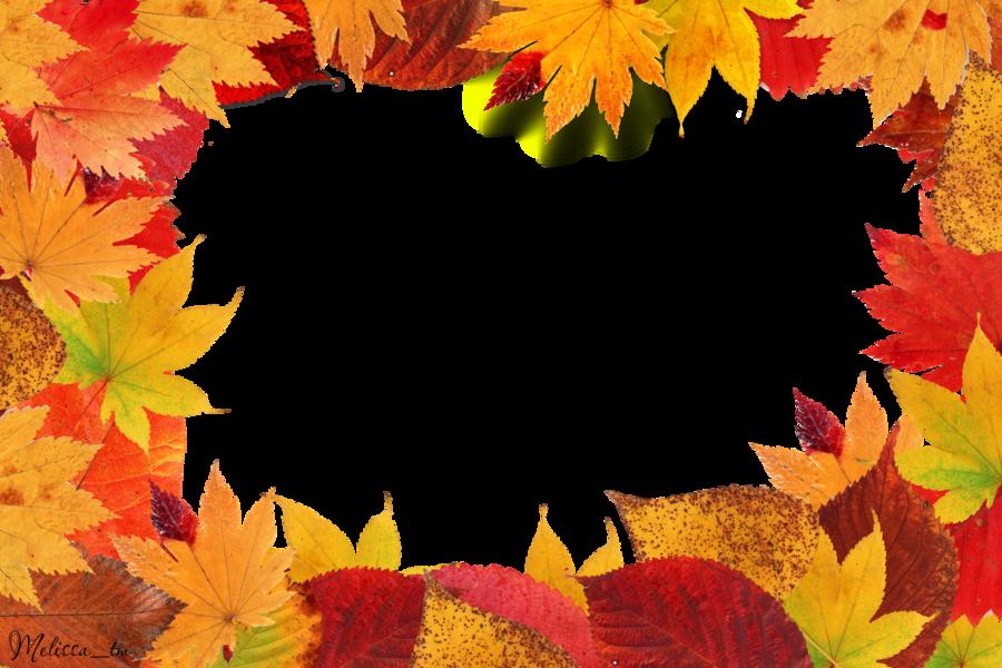 Leaf Frame Free Cut Out - 17609 - TransparentPNG