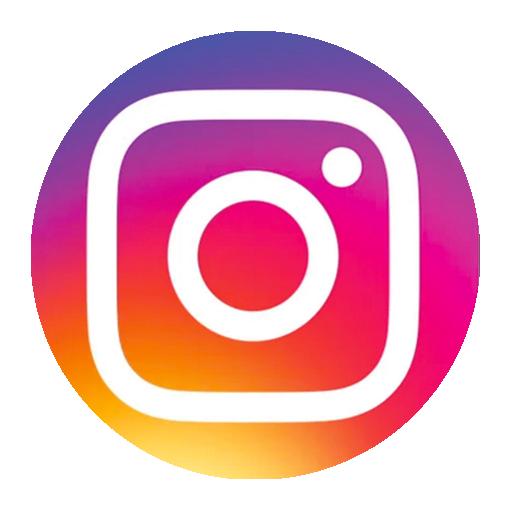 Logo Instagram Cut Out PNG - 13572 - TransparentPNG