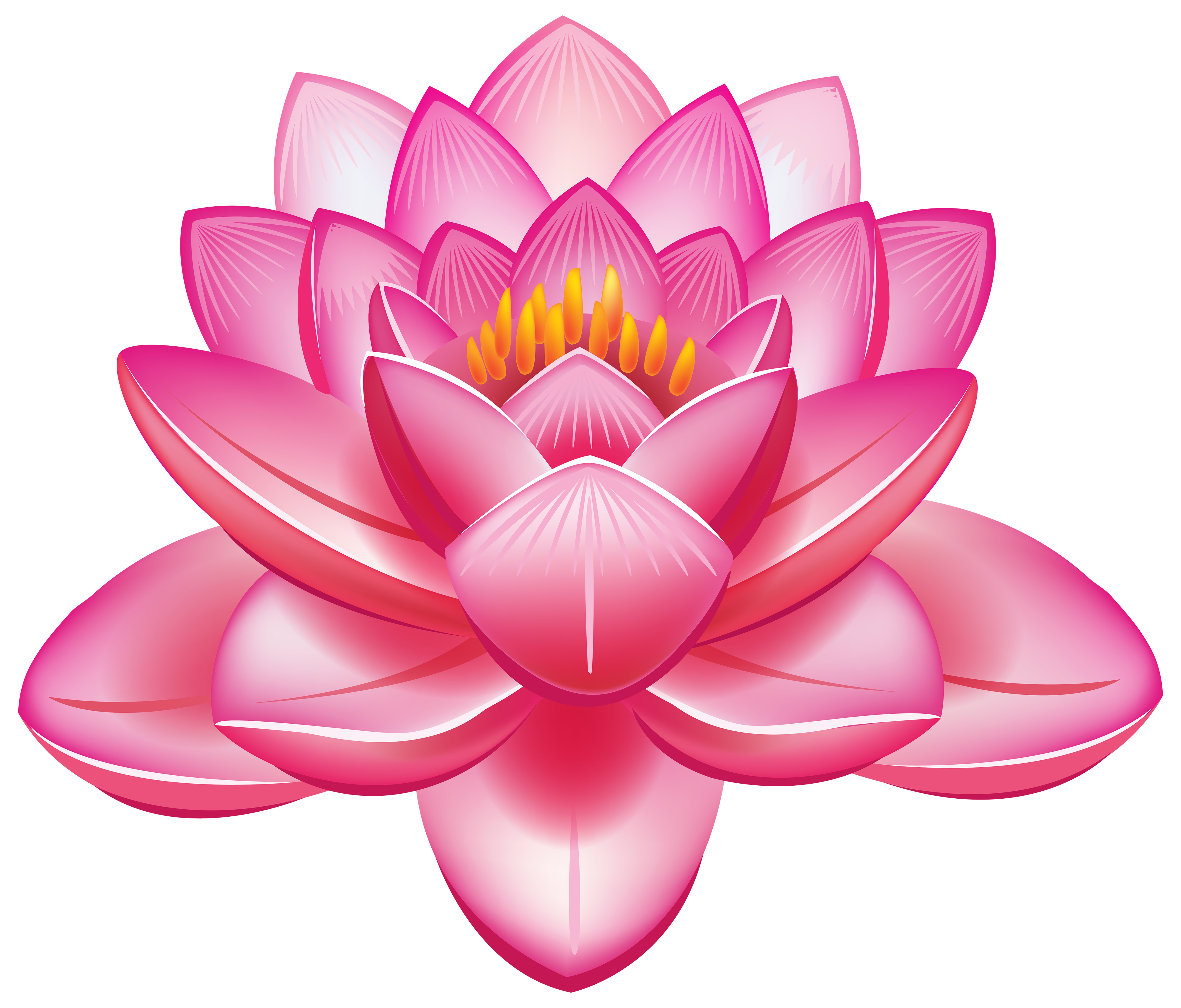 Lotus Picture PNG Images