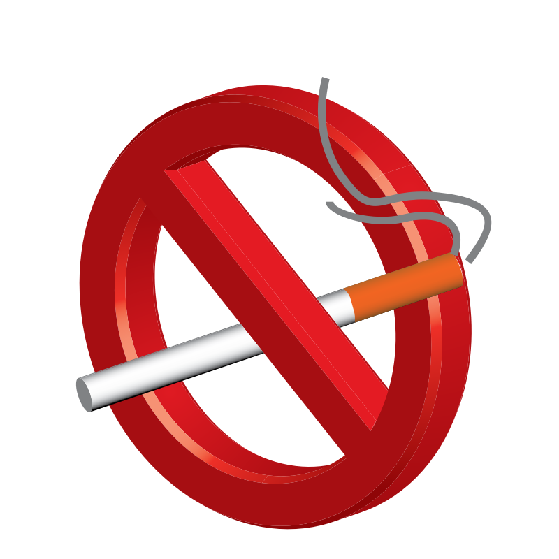 No Smoking In Room Png 6652