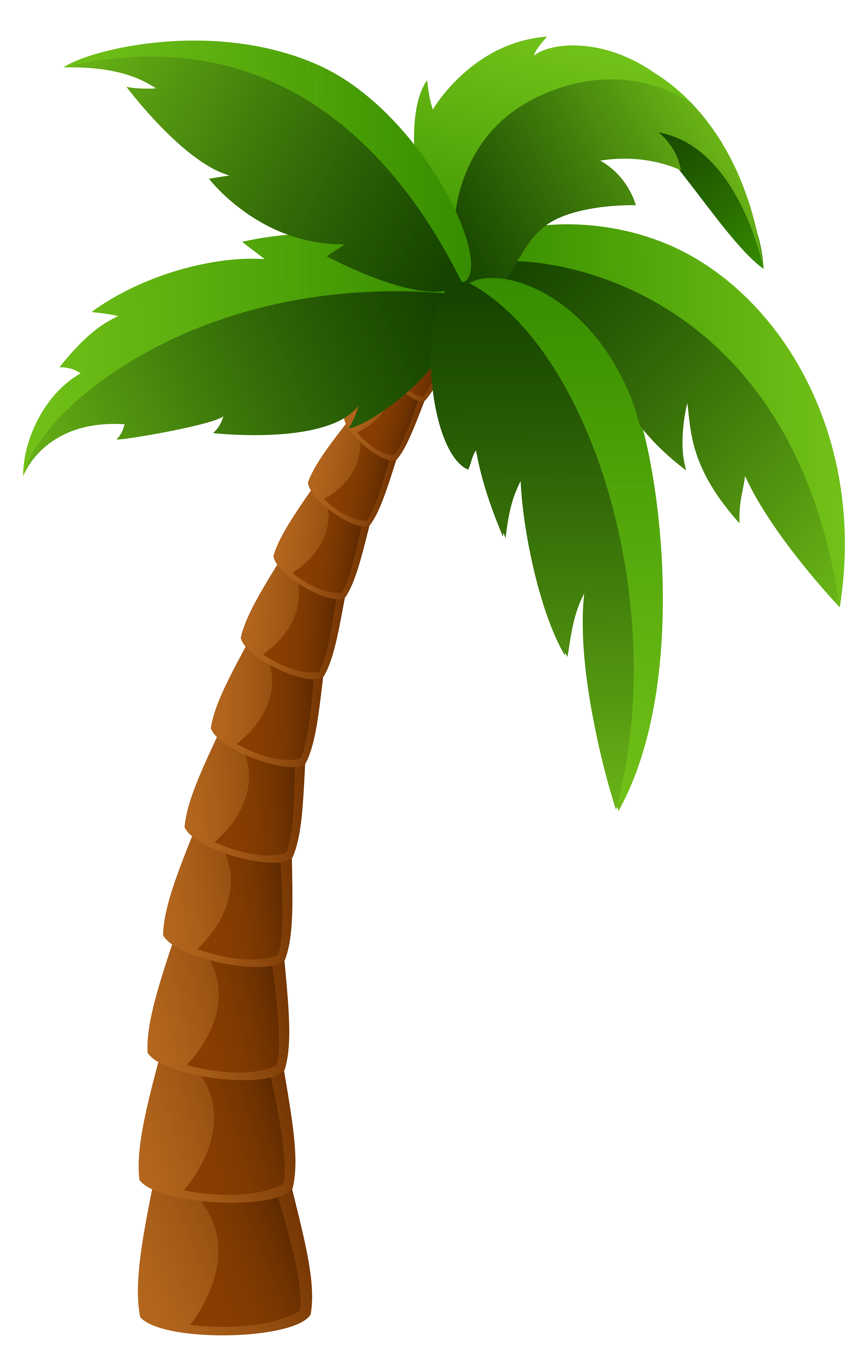 Palm Tree Free Transparent Png 14