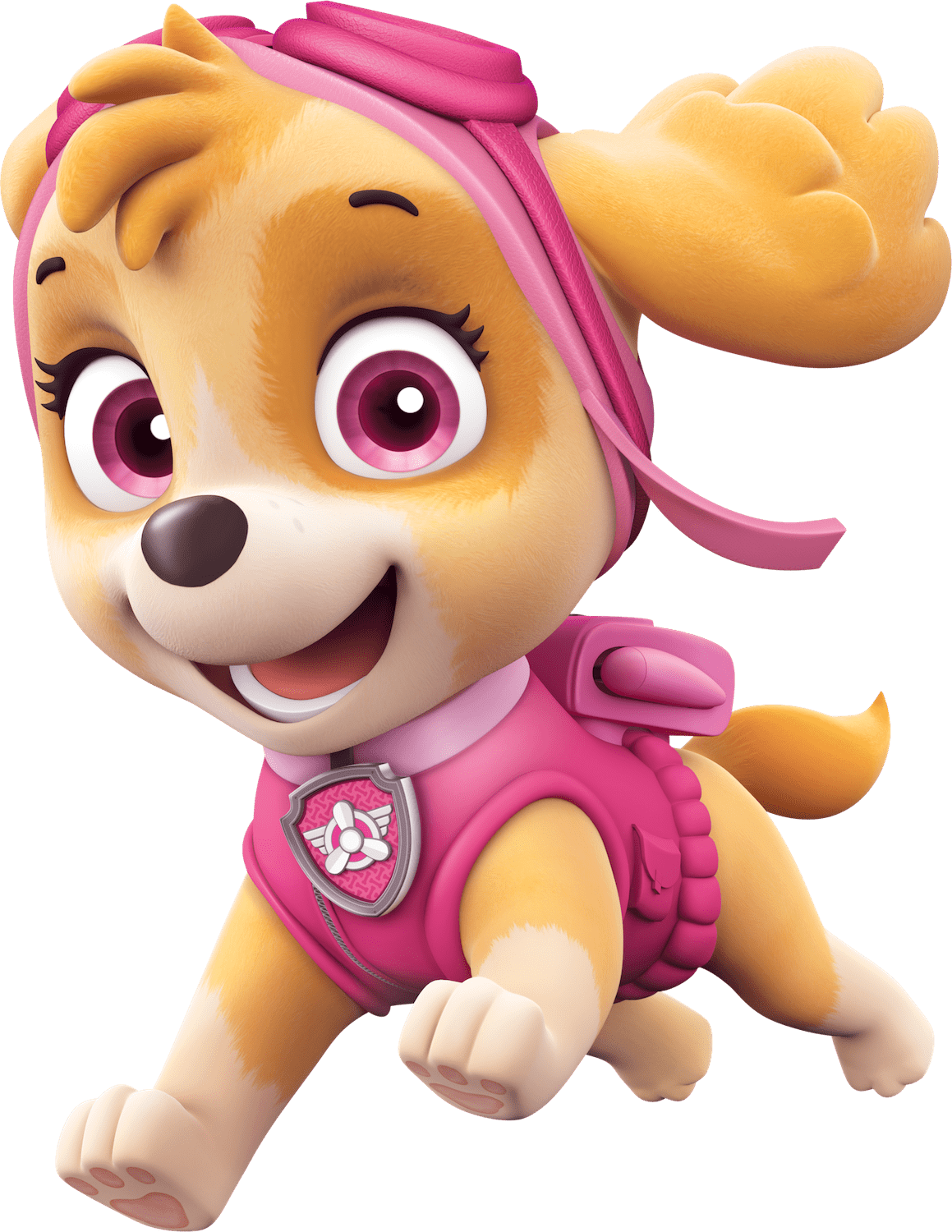 Happy Paw Patrol Photos 14105