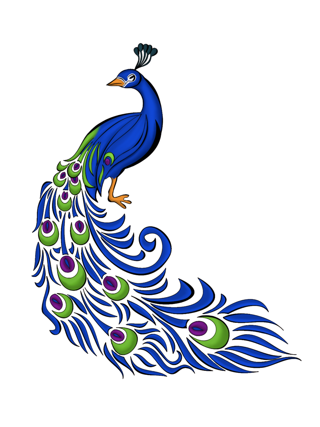 Peacock Feather Vector Graphics Png 3135