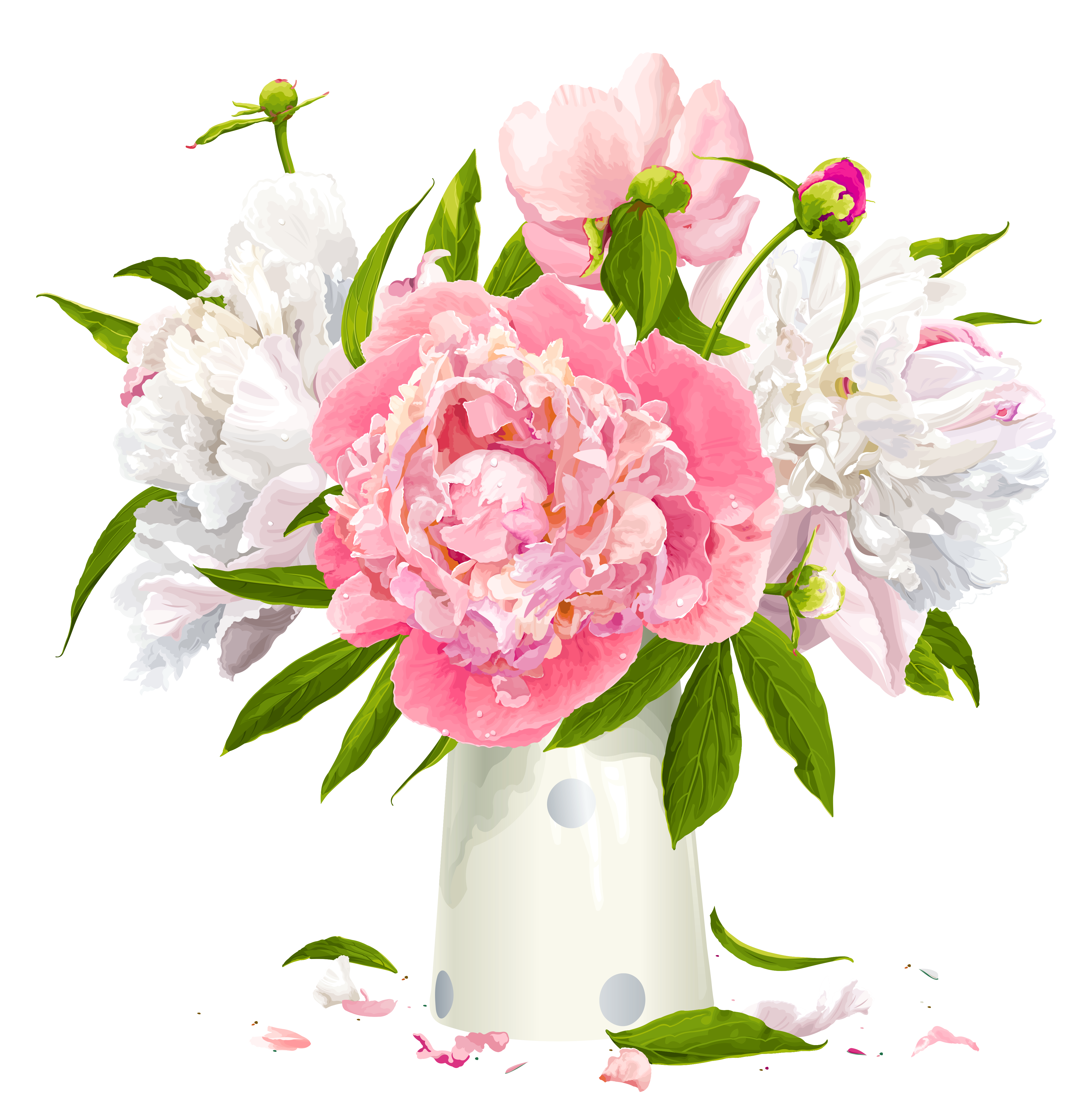 Peony Flower HD Photo Png PNG Images