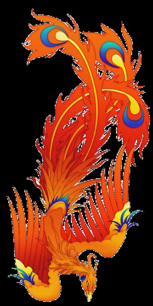 Rsultats de recherche dimages pour image de phoenix tattoo