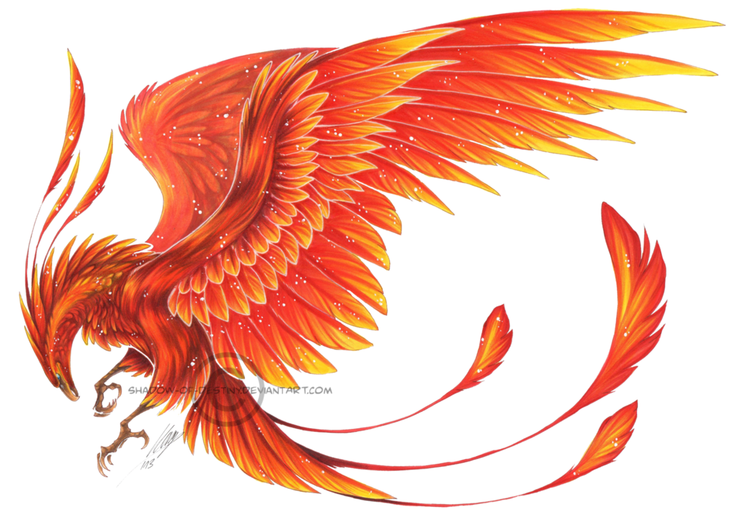 Flying Phoenix High Quality PNG 21289