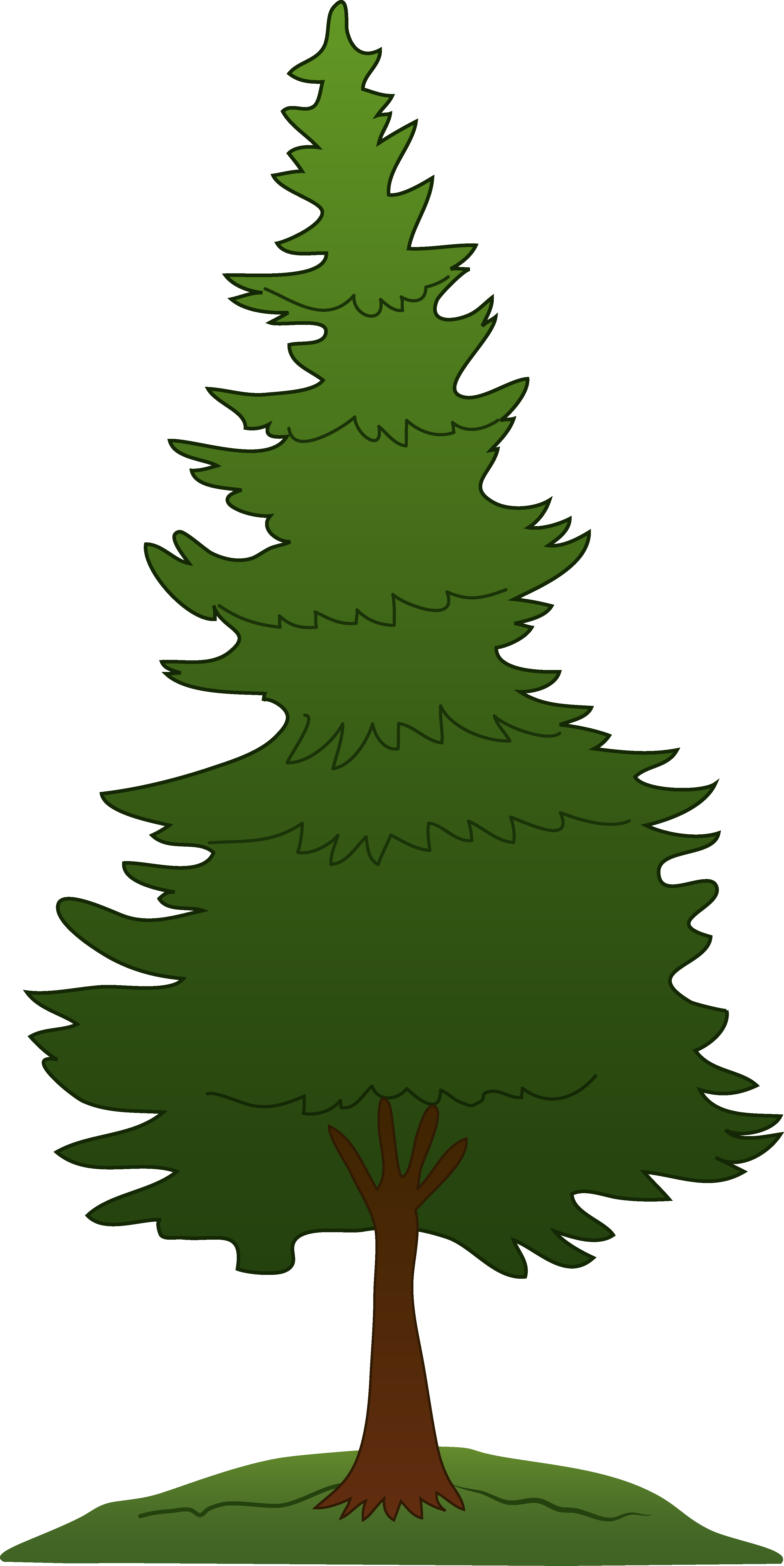 Background Pine Tree 20