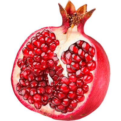 Pomegranate Images 25929
