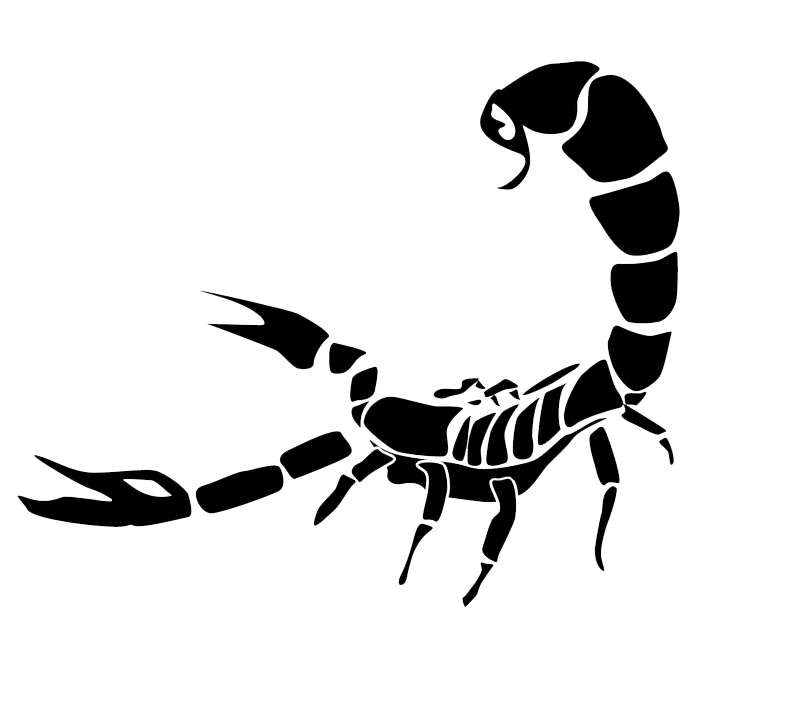 Scorpion Tattoos PNG Picture 6969