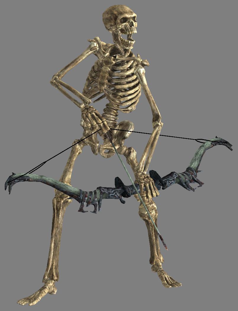 Skeleton Background Hd 14045 Transparentpng