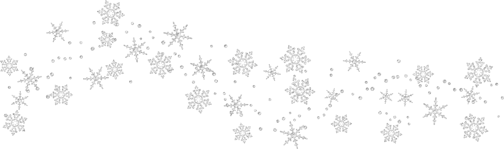 Snowflakes Picture 11575