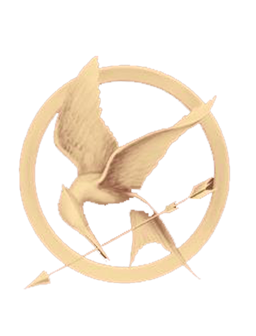 The Hunger Games Circle Logo 26145