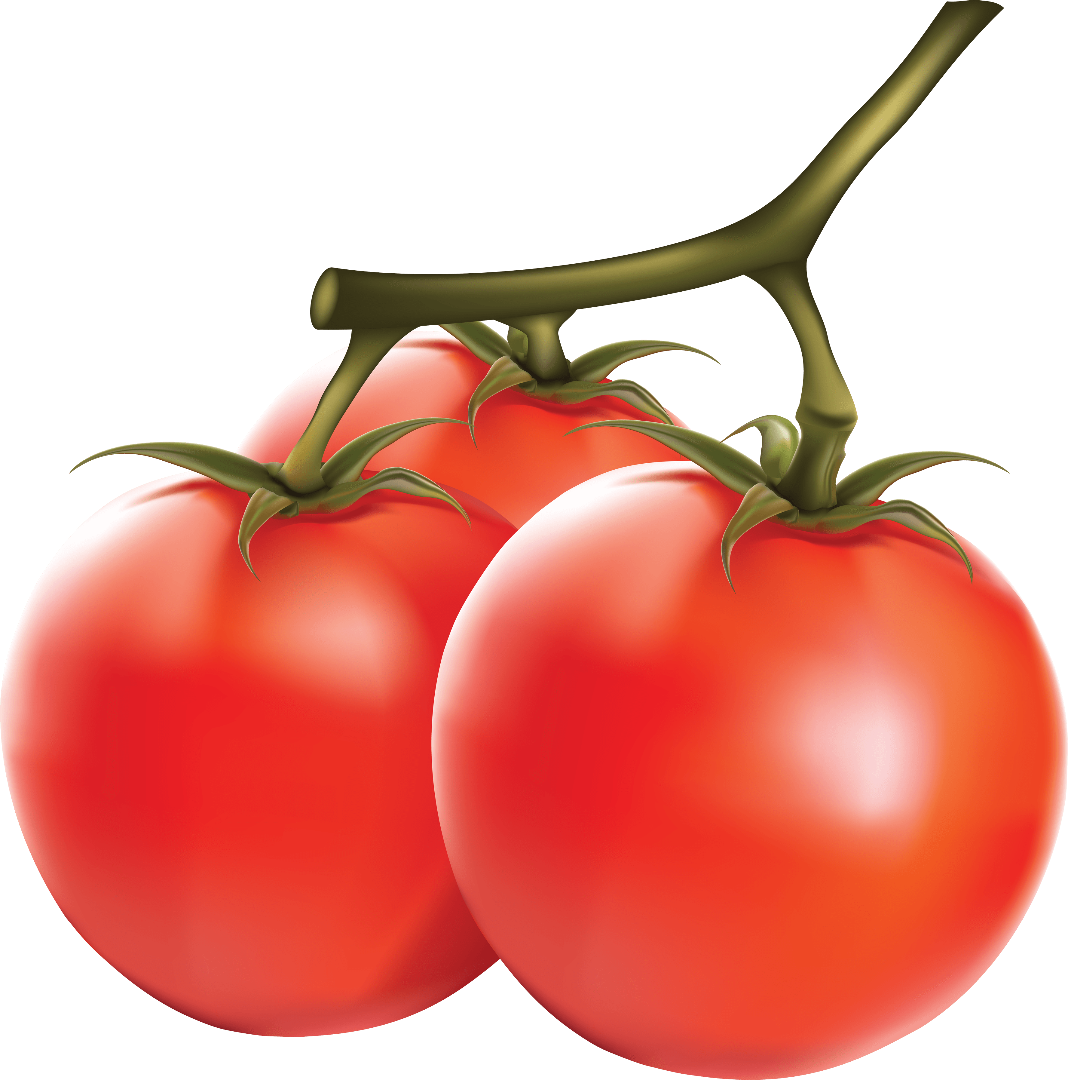 Tomato Free Download PNG Images