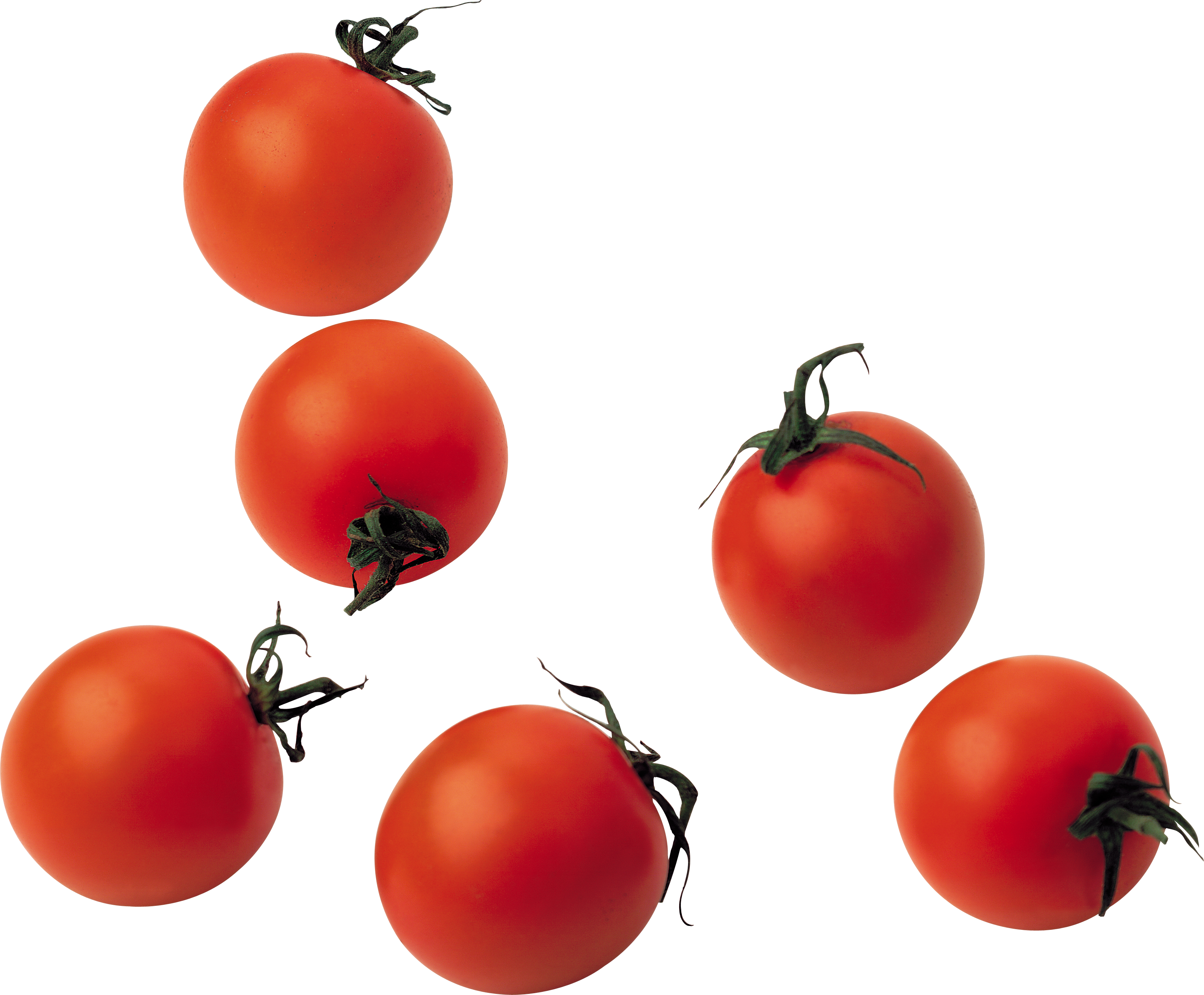 Tomato Best 24 PNG Images