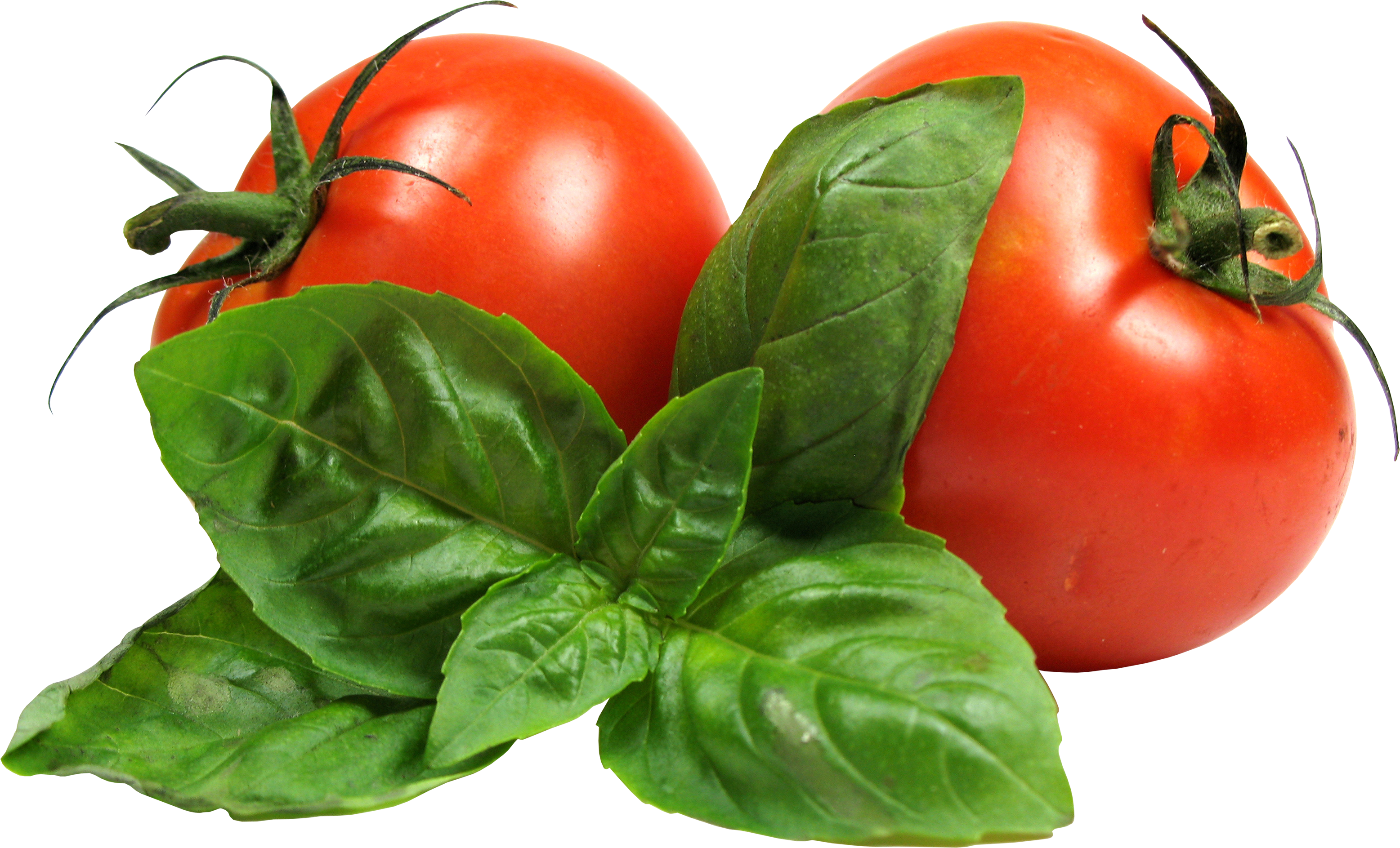 Tomato Hd Image PNG Images