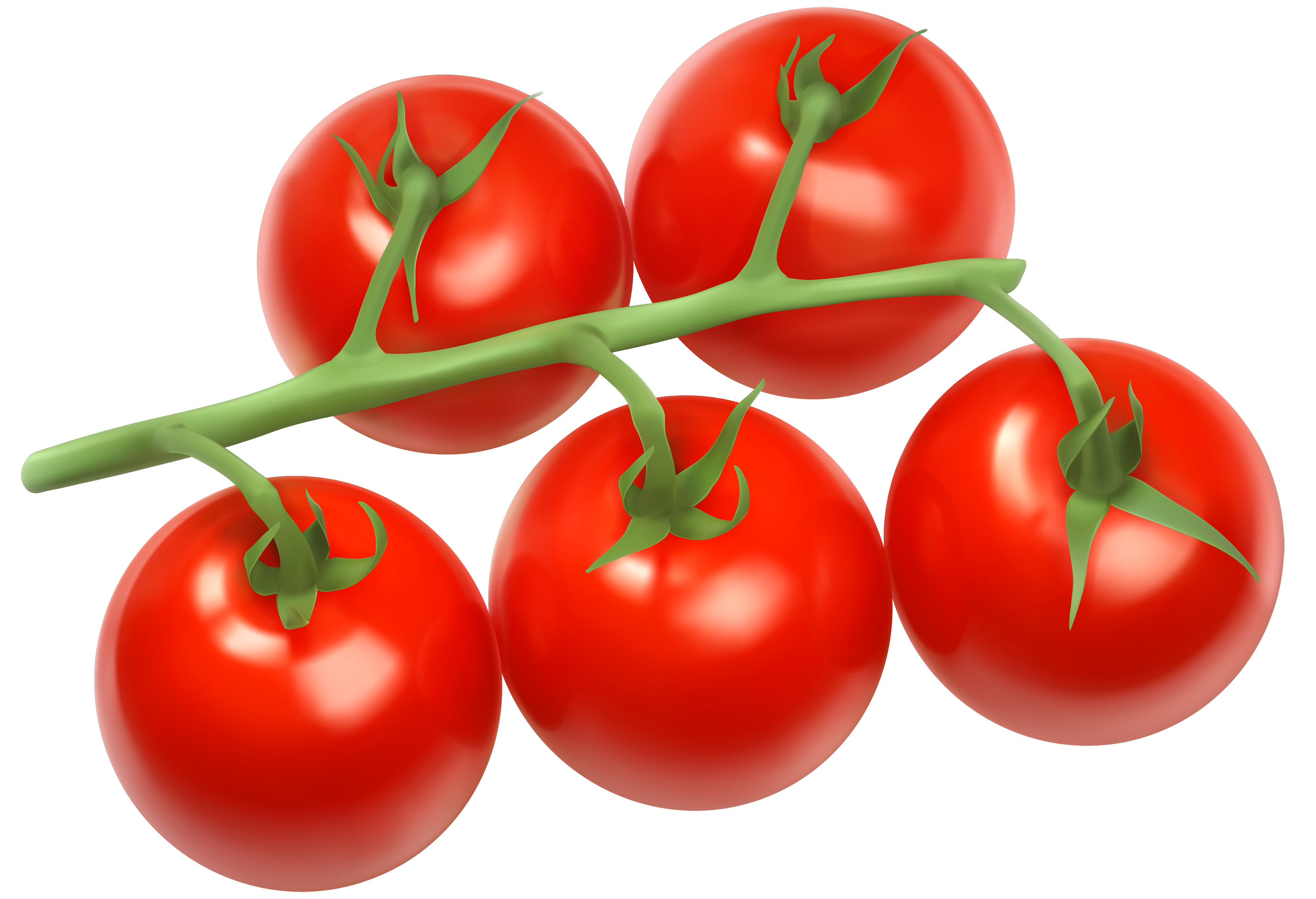 Tomato Best PNG Images
