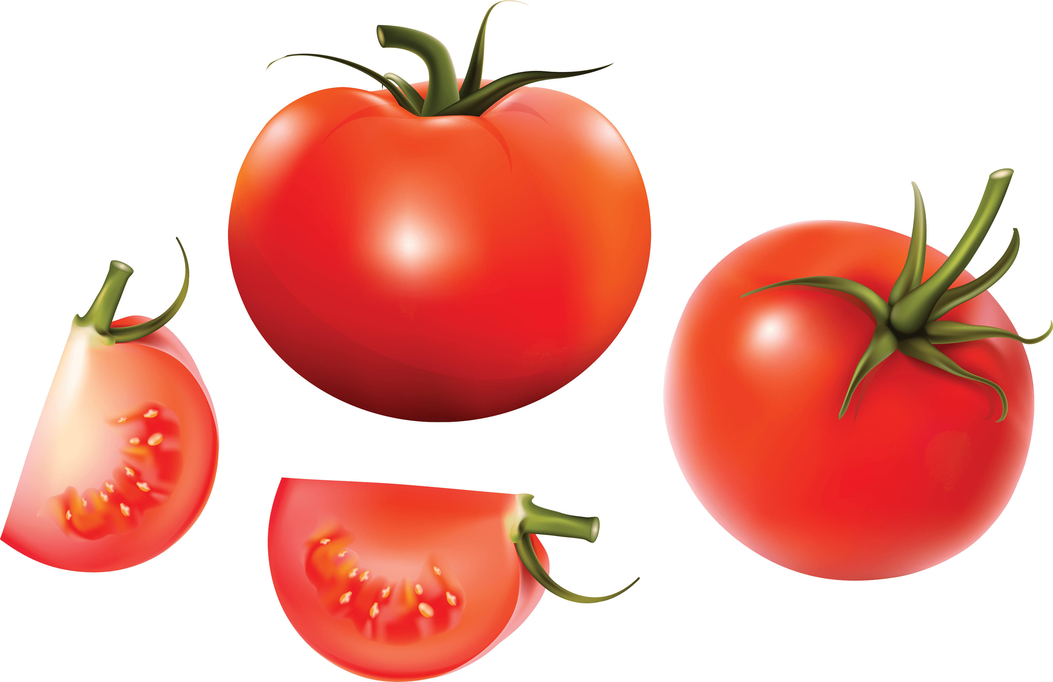 Tomato Picture 23 PNG Images