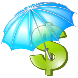 Travel Insurance, Protect Your Money, Umbrella, Money 8768