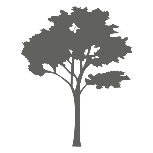 Tree Silhouette Cut Out Png 10824
