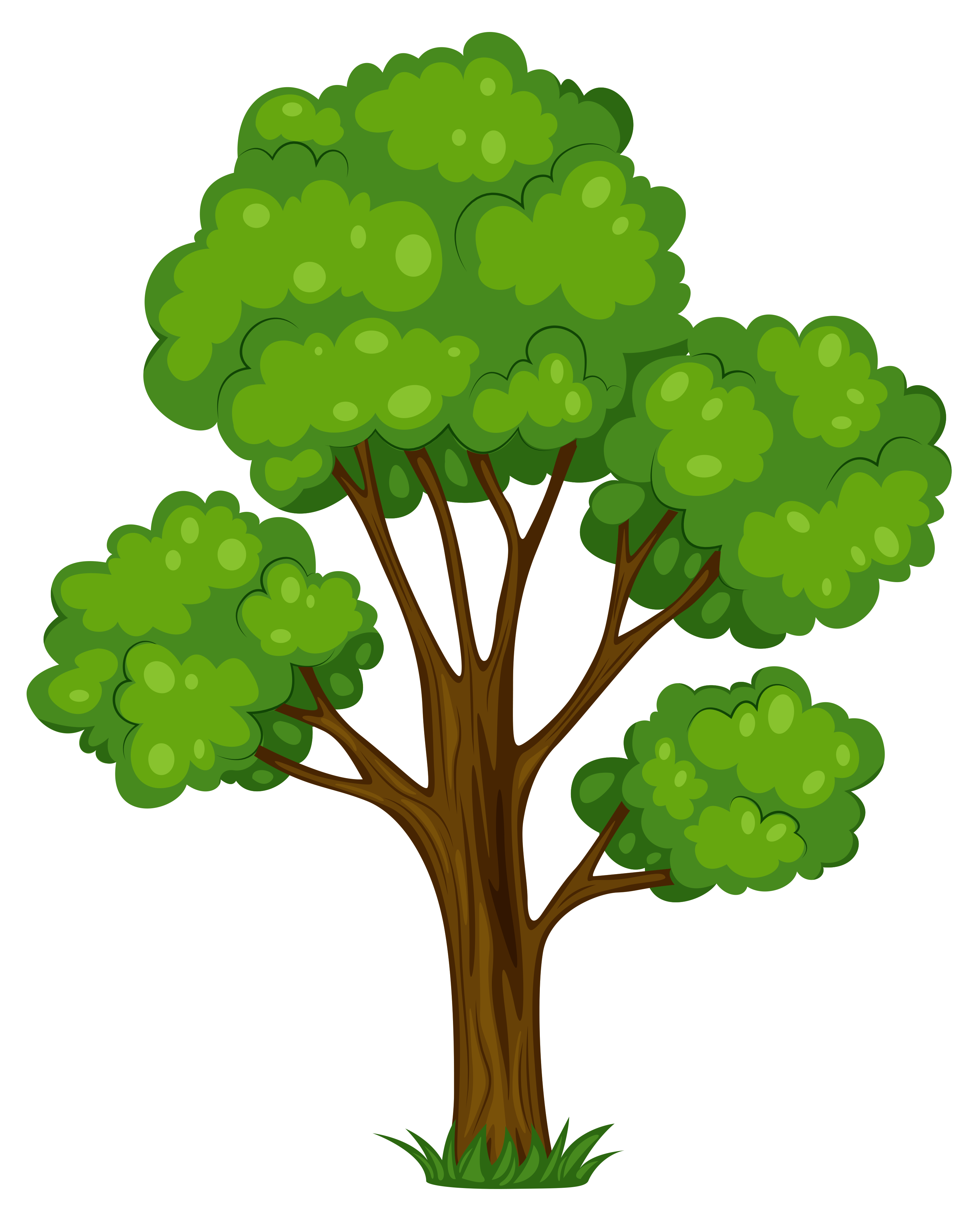 Tree Clip Art PNG Images
