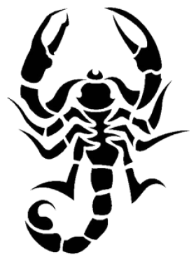 Scorpion Tattoo Png Images Download 6313