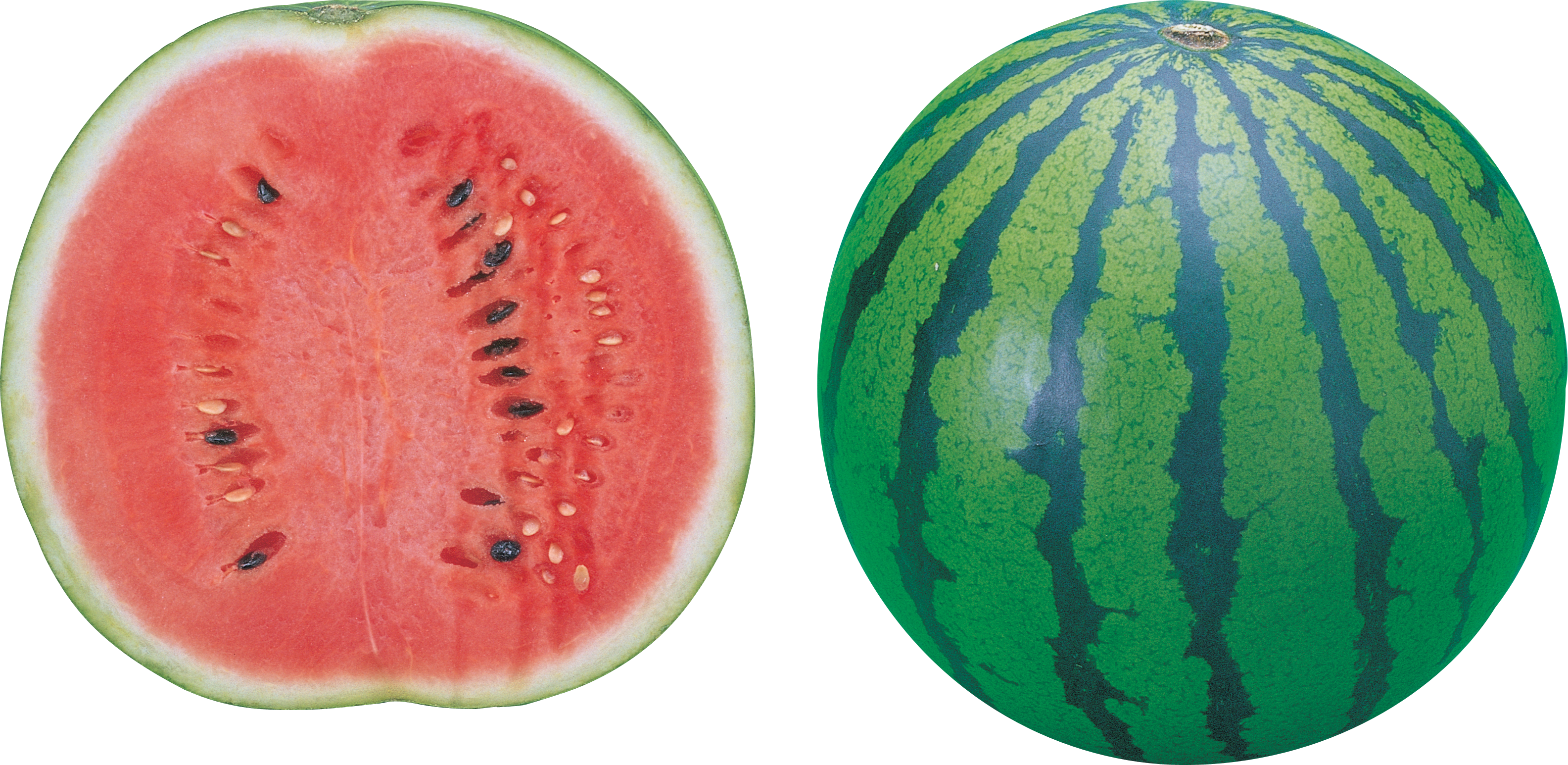 Watermelon Cut Out Picture 16186
