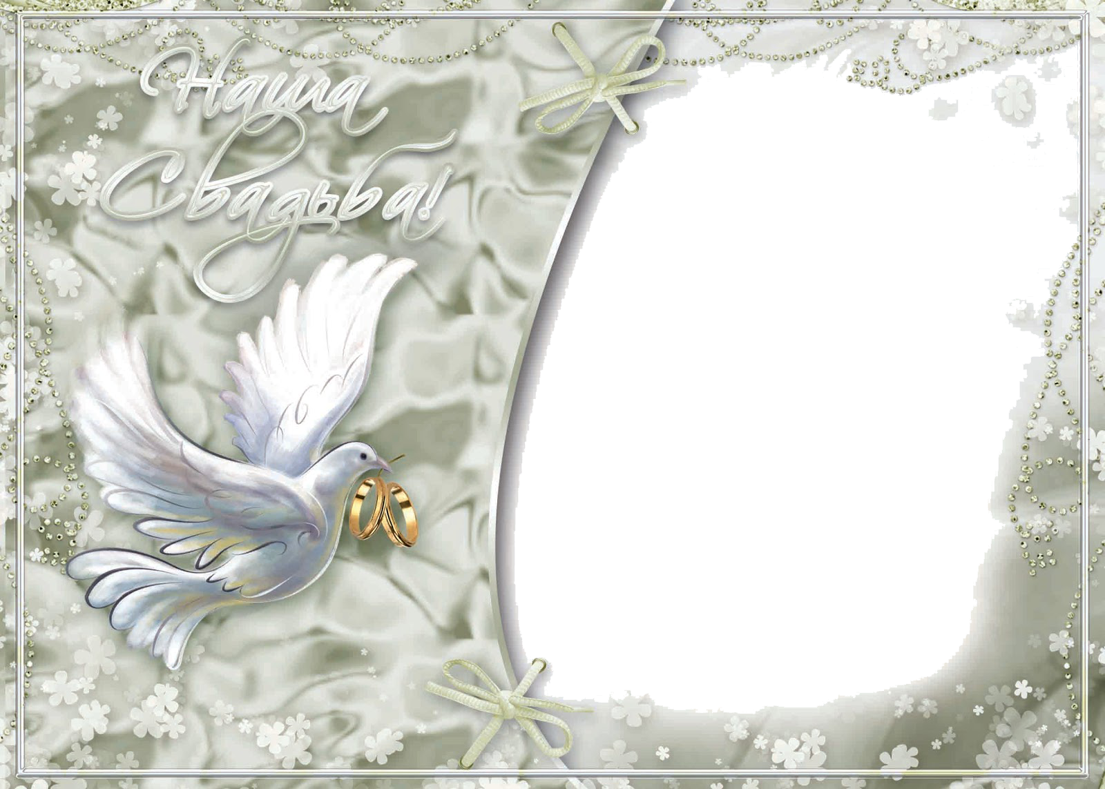 Wedding Frame Amazing Image Download - 8493 - TransparentPNG