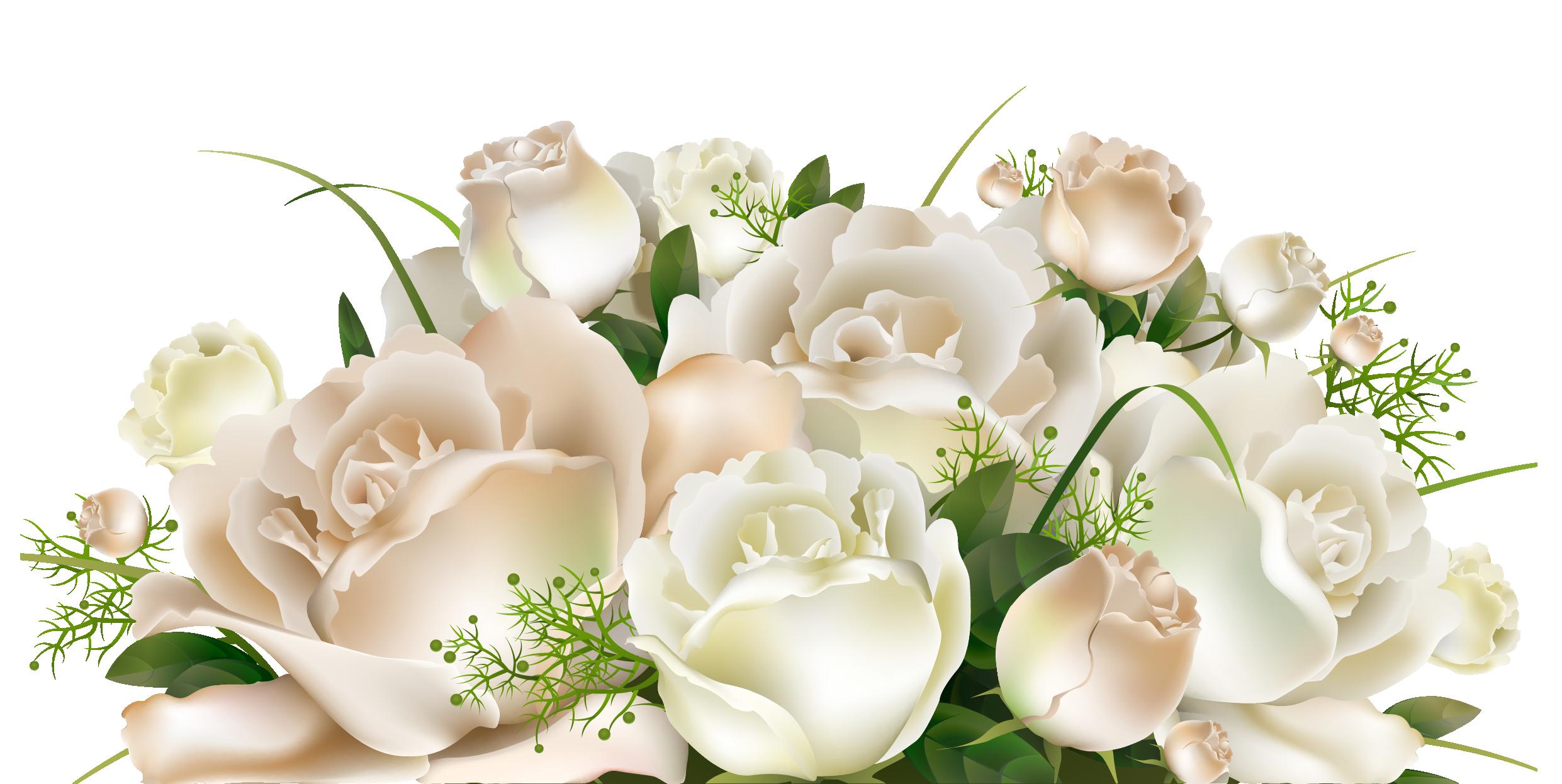 Download White Rose Bucket Png 20075 Transparentpng