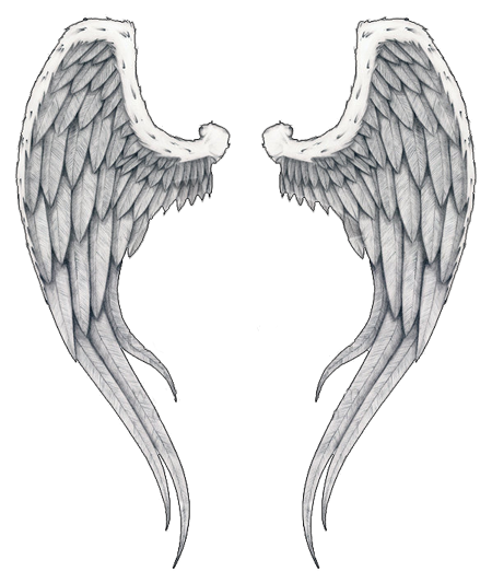 Wings Tattoos Clipart 6657