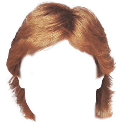 Wig Afro Poof Transparent Png PNG Images