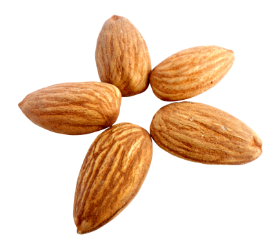 Arrayed In The Form Of Transparent PNG Image Download Picture Five Chichewa Almond