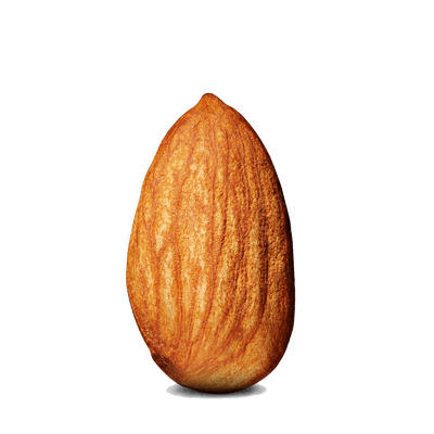 Transparent PNG Photo Download One Steep Almond